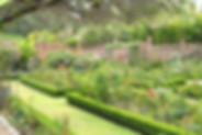 Casa Hana Este gardens, in West Ajijic, Jalisco, Mexico