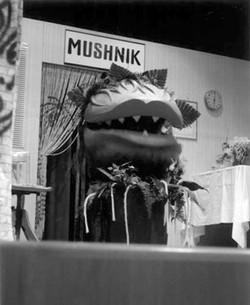 mushnik_03