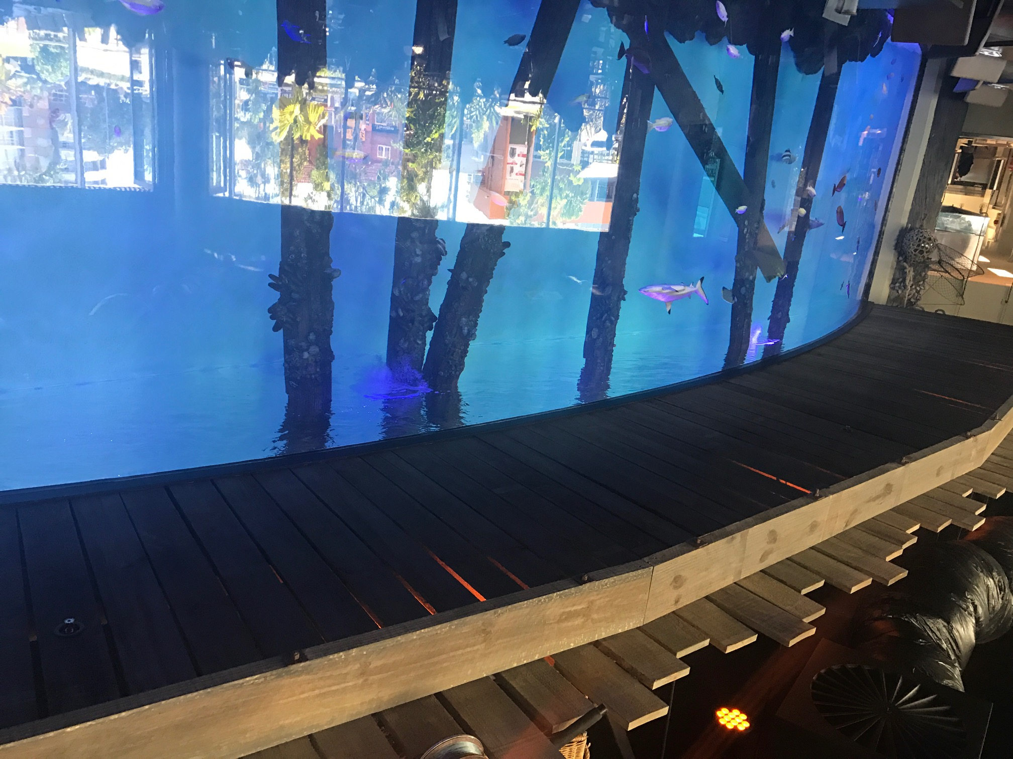Cairns Aquarium Decking