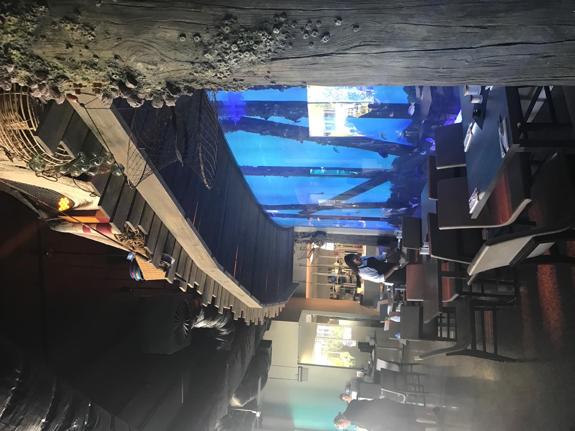 Cairns Aquarium Decking