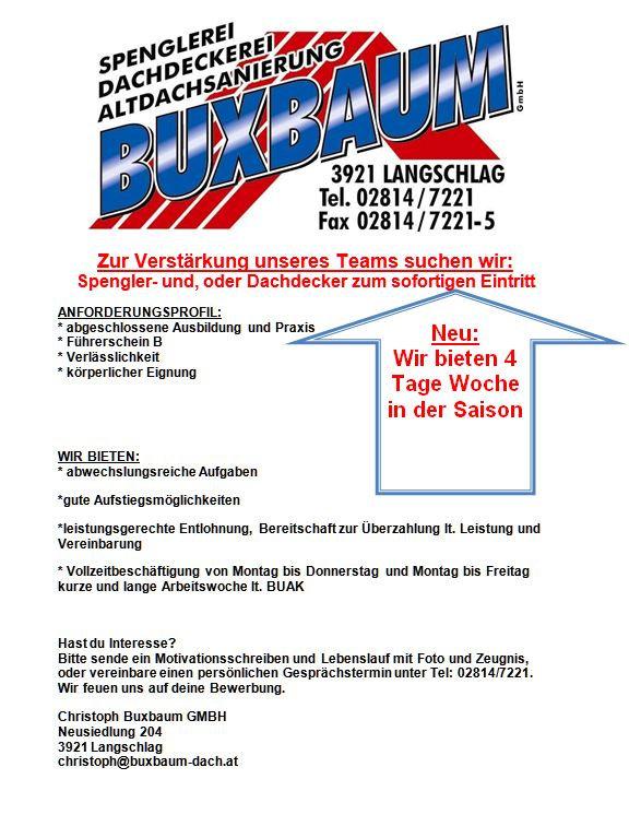 Spengler-Dachdecker.JPG