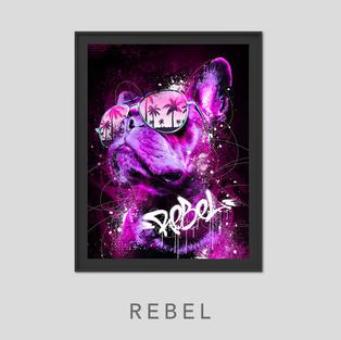 Vignette-Rebel.jpg