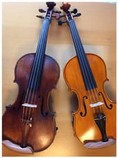 violin chinrest COMFOREST