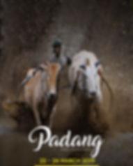 Padang Slide 2019.jpg