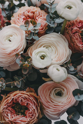 selective-focus-photograph-of-flowers.jp