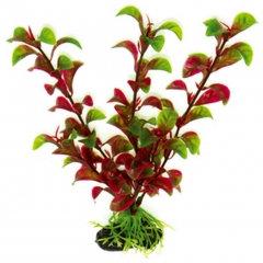 Растение пластик.
