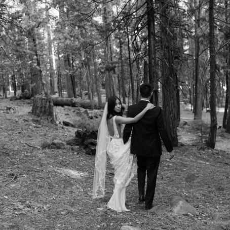 Bryan + Heidi   bridals in the woods