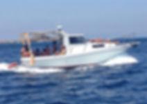 Alson tour barca
