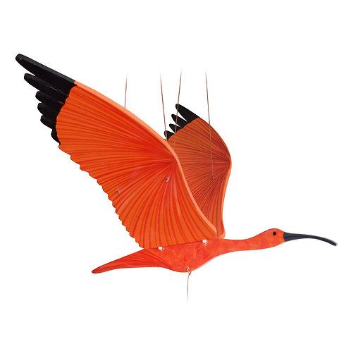 Ibis Escarlata