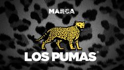 los_pumas_logo