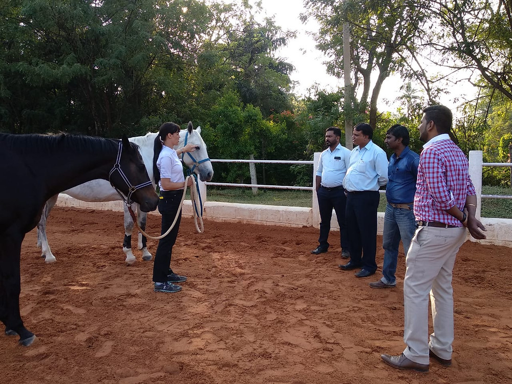 Embassy International Riding School, HQ Leadership, Ken Training Consultants, Leadership Training, Effective Leadership Strategy, Clear Communication, Workshops, Outbound Training, Outbound Learning Bangalore, Horses, Transformations, Innovative, Learning Concepts, Isabelle