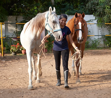 HQ Leadership India - Training with Horses - Young Leaders at OMR