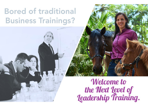 Traditional Business Training?