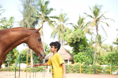 Horse Adventure Day for Children