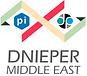 Logo DFS PI.png