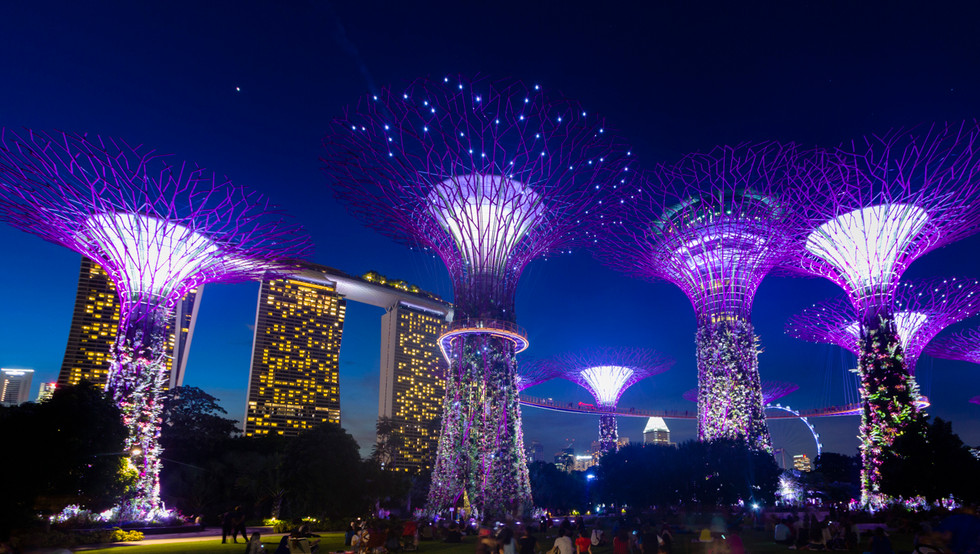 20150607-Singapore-Singapore-Supertrees_