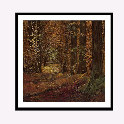 Woods and Leaves