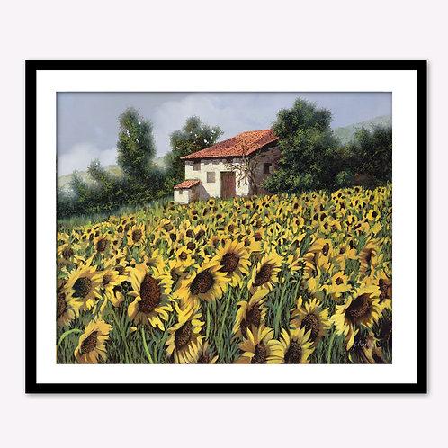 Single Stone House in the Sun Flower Field