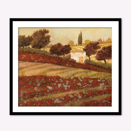 Lone Home in Red Flower Field