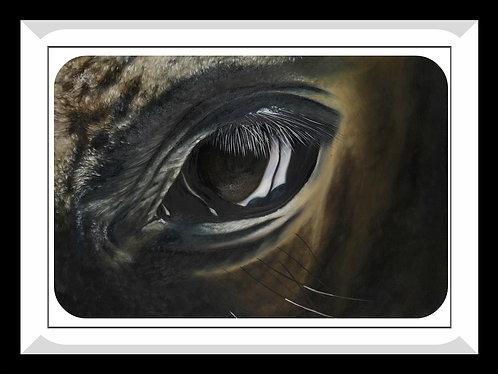 Horse Painting_Eye