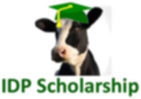 IDP scholarship cow.pub.jpg
