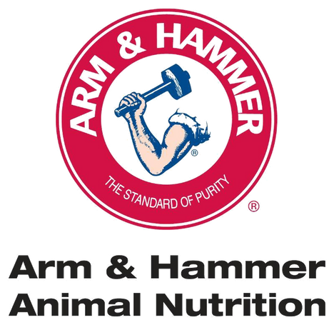 Arm and Hammer - Transparent.png