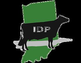 IDP%20New%20Logo%20-%20Transparent_edite