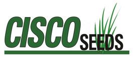 Cisco Seeds Logo.jpg