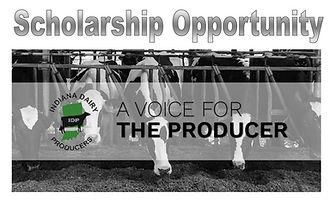 Scholarship%20Opportunity%202020_edited.