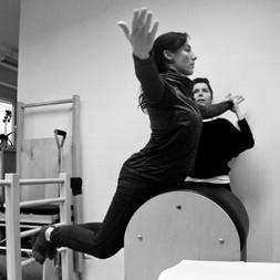 Flying Swan on the Ladder Barrel