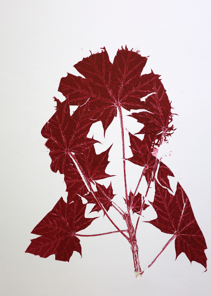Red Maple Father