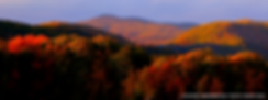 Slider_InTheBerkshires_Fall2019.png