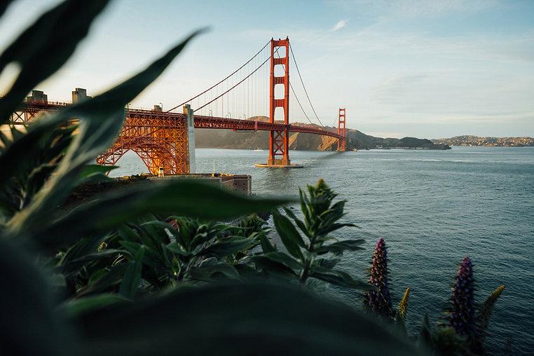 San Francisco Wine Tour