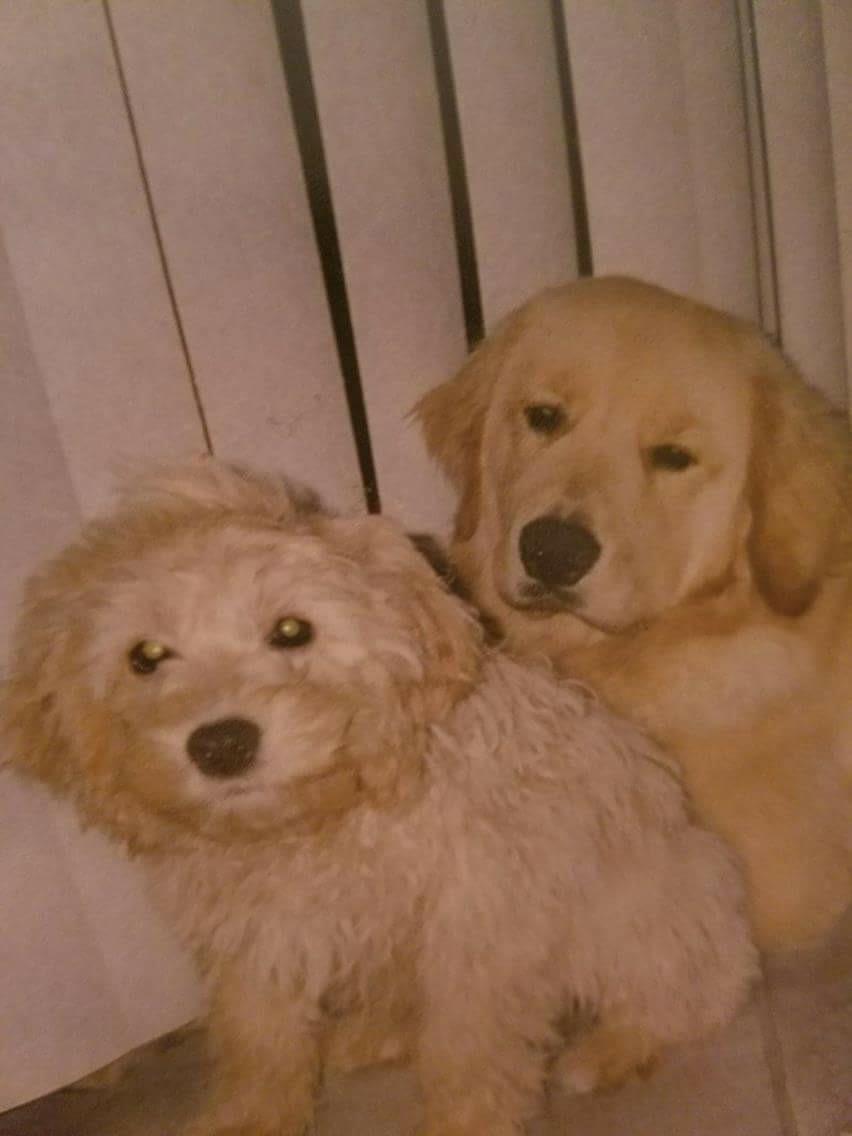 Charlie & Jake