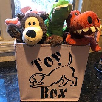 Toy Box.jpg