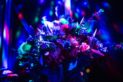 Halloween lightng on flowers
