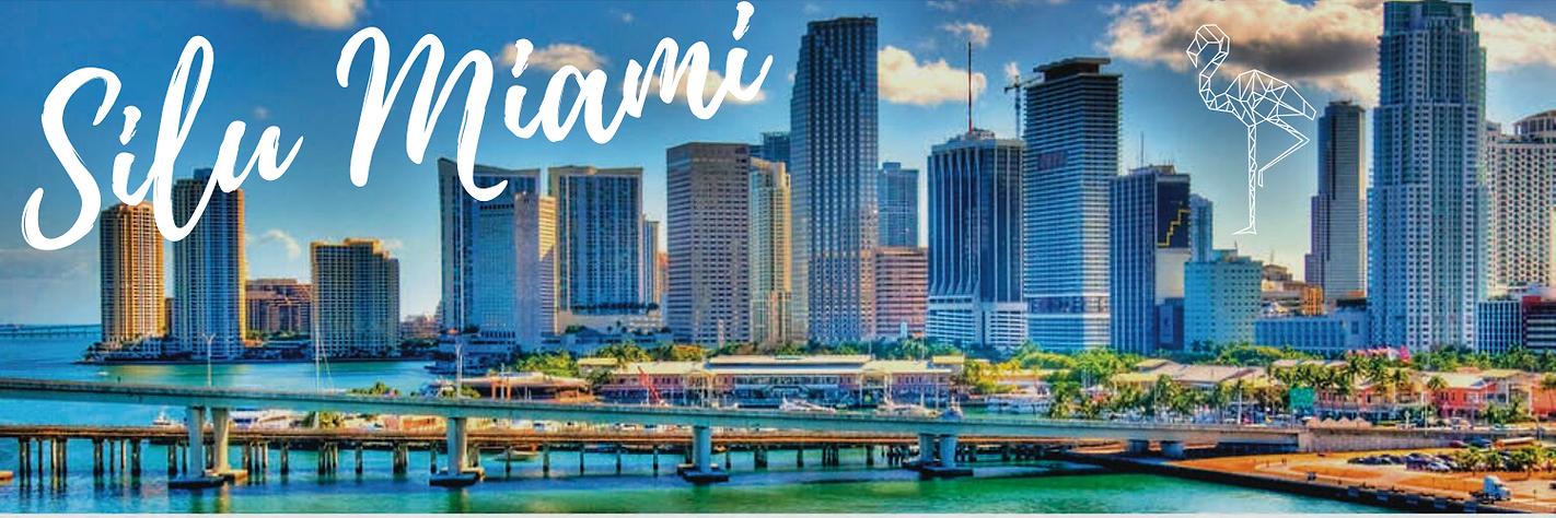Silu Miami.png