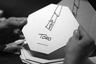 Toro-mains light.jpg