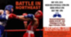 Battle in Northeast 2.jpg