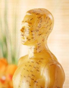 acupuncture-model-236x300.jpg