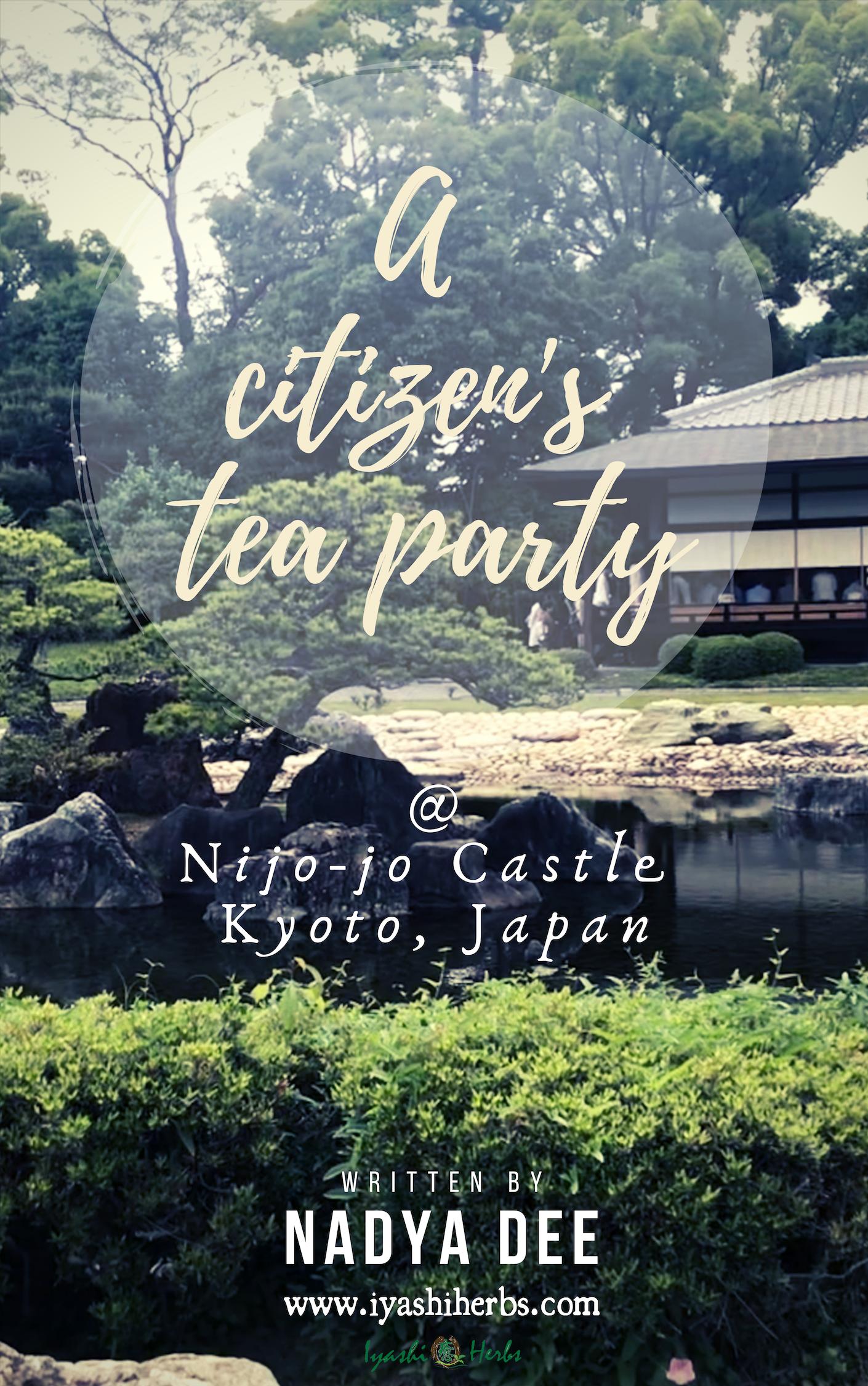 A citizens tea party