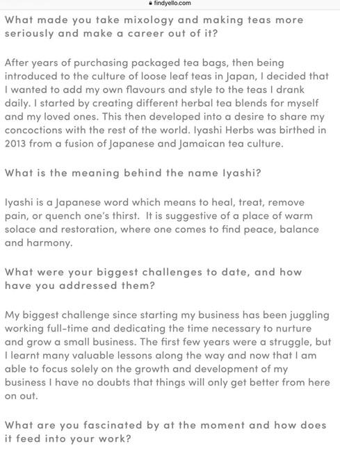 Find Yello Interview 2
