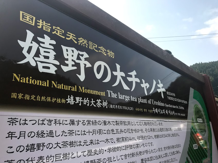 tea plant info sign