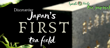 Discovering Japan's First Tea Field