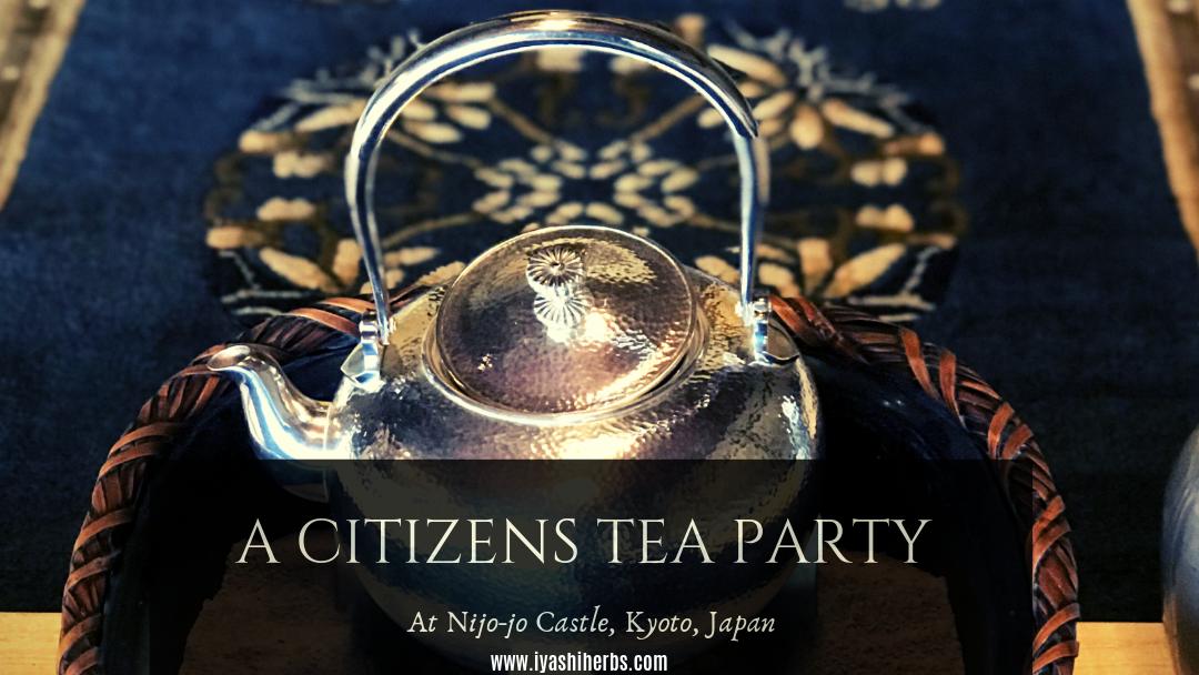 A citizens tea party teapot