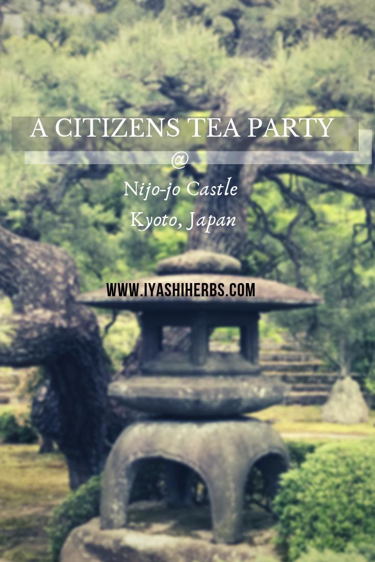 A Citizens Tea Party lantern