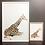 Thumbnail: Geoffrey the Baby Giraffe Print