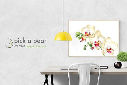orchid banner.jpg