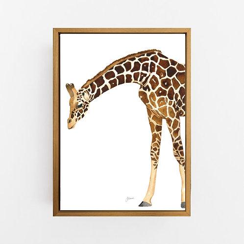 Amber the Giraffe Wall Art | CANVAS