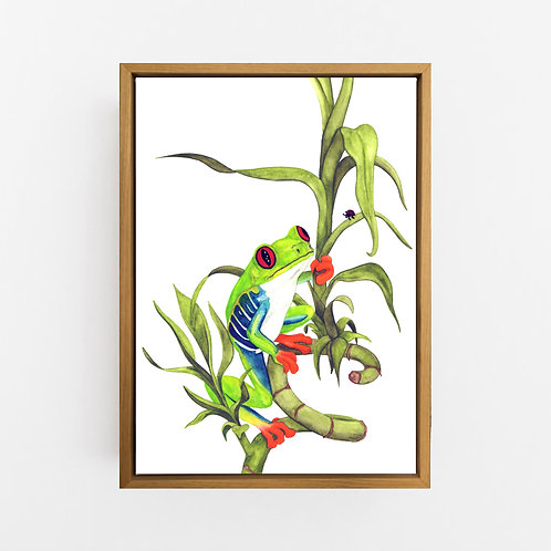 Archie the Red-Eyed Green Tree Frog Wall Art | CANVAS